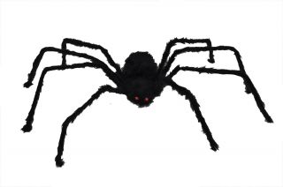 """50"""" Hairy Posable Spider"""