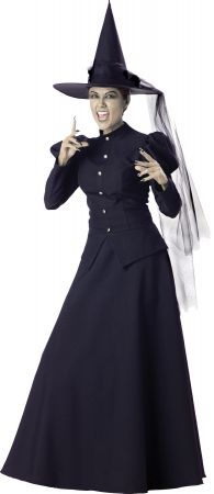 Women's Witch Costume