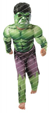 Boy's Deluxe Muscle Hulk Costume