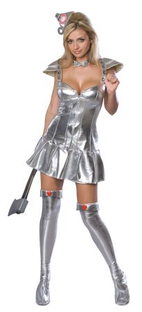 Women's Flirty Tin Man Costume - Wizard of Oz
