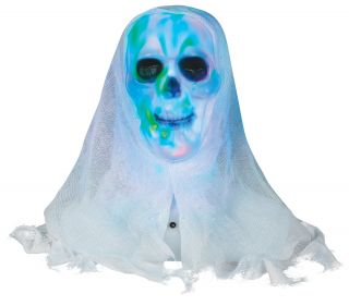 Lightshow Skull Bust with White Face